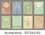vector set of eco nature labels ... | Shutterstock .eps vector #557161192