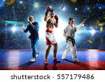 multi sports boxing karate... | Shutterstock . vector #557179486