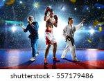multi sports boxing karate... | Shutterstock . vector #557179486