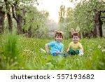 catholic easter tradition egg... | Shutterstock . vector #557193682