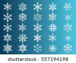 snowflake vector icon... | Shutterstock .eps vector #557194198