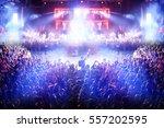 crowd at a rock concert... | Shutterstock . vector #557202595