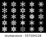 snowflake vector icon... | Shutterstock .eps vector #557204128
