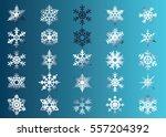 snowflake vector icon... | Shutterstock .eps vector #557204392