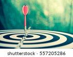 red dart arrow hitting in the... | Shutterstock . vector #557205286