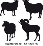 sheep vector | Shutterstock .eps vector #55720675