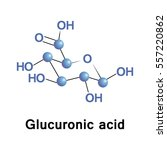 glucuronic acid is a uronic... | Shutterstock .eps vector #557220862