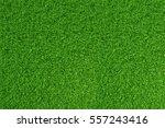 green grass. natural background ... | Shutterstock . vector #557243416