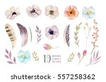 watercolor boho flower set.... | Shutterstock . vector #557258362