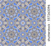 vector laced decorative... | Shutterstock .eps vector #557263396