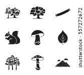 forest set icons in black style.... | Shutterstock .eps vector #557272672
