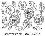 set of doodle floral elements... | Shutterstock .eps vector #557346736