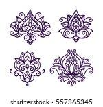 vector  line  illustration ... | Shutterstock .eps vector #557365345
