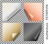 curled metallic foil empty... | Shutterstock .eps vector #557409196