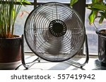 Fan In Motion Between Potted...