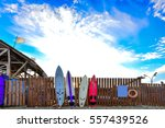 surf boards standing along the... | Shutterstock . vector #557439526