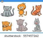 cartoon illustration of funny...   Shutterstock .eps vector #557457262