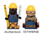 Stock photo funny cats are wearing a suit of builder and holding a builder s level and project plan craftsman 557498908