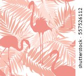 tropical palm leaves and exotic ... | Shutterstock .eps vector #557526112