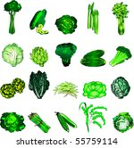 vector illustration of 20 green ... | Shutterstock .eps vector #55759114