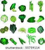 vector illustration of 20 green ... | Shutterstock .eps vector #55759114
