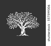 olive tree silhouette icon... | Shutterstock .eps vector #557599306