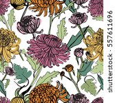 japanese chrysanthemum hand... | Shutterstock .eps vector #557611696