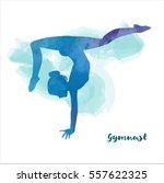 Elegant Gymnast Girl Makes...