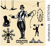 circus and amusement park... | Shutterstock .eps vector #557707456
