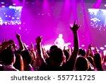 blurred background of concert | Shutterstock . vector #557711725