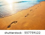 beach  wave and footprints at... | Shutterstock . vector #557759122