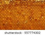organic honeycomb texture and... | Shutterstock . vector #557774302