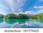 japanese landscape   goshiki... | Shutterstock . vector #557774425
