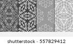 set of vector seamless pattern. ... | Shutterstock .eps vector #557829412
