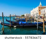 venice  italy   circa september ... | Shutterstock . vector #557836672