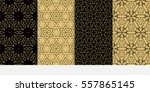 set of modern floral seamless... | Shutterstock .eps vector #557865145
