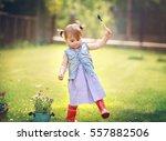 little girl is planting flowers ... | Shutterstock . vector #557882506