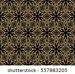 golden floral geometric lace... | Shutterstock .eps vector #557883205