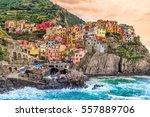 manarola fishing village ...   Shutterstock . vector #557889706
