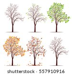 seasons of tree vector | Shutterstock .eps vector #557910916