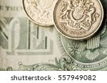 Sterling Pound Coin On An...