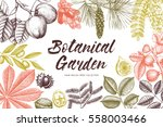 decorative design with  hand... | Shutterstock . vector #558003466
