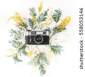 vintage retro photo camera ... | Shutterstock . vector #558053146