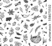 pattern with hand drawn vector... | Shutterstock .eps vector #558075532