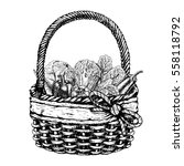 vector basket with vegetables.... | Shutterstock .eps vector #558118792
