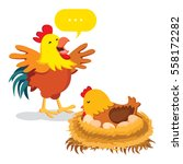 chicken family. hen hatching... | Shutterstock .eps vector #558172282