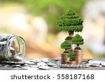 trees growing on coins money... | Shutterstock . vector #558187168