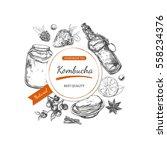 kombucha. vector hand drawn... | Shutterstock .eps vector #558234376