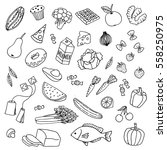 variety of hand drawn doodle... | Shutterstock .eps vector #558250975