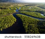 Stock photo aerial view of a rainforest in brazil 558269638